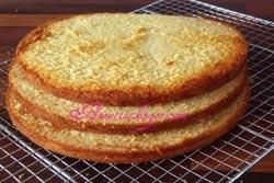 Cake Boss sponge lagkagebunde